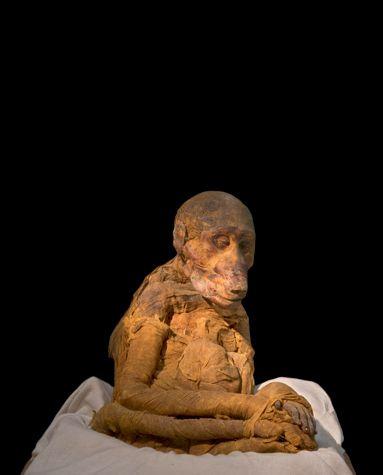 Ramses ii mummy gia - 3 6