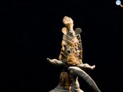 mummia di ibis