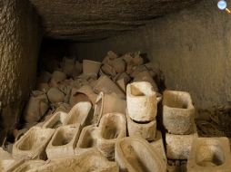 Ibis egizi mummificati